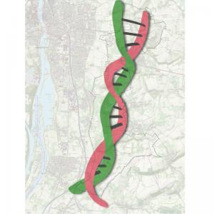 Project Gebiedsvisie Middenterras DNA